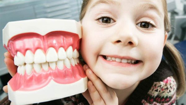 девочка с макетом челюстей